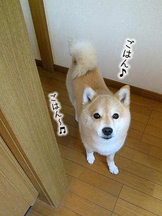 20120627-karin_12_103.jpg