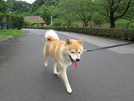 20120701-karin_12_104.jpg