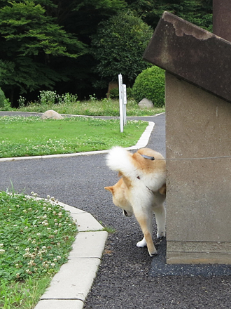 20120701-karin_12_106.jpg