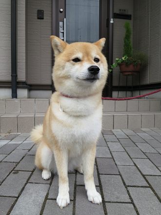20120704-karin_12_108.jpg