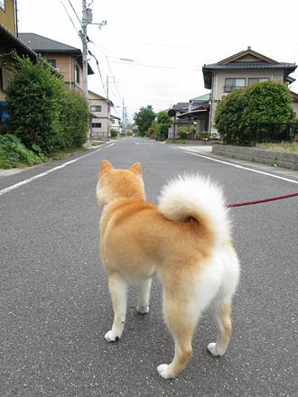 20120704-karin_12_109.jpg
