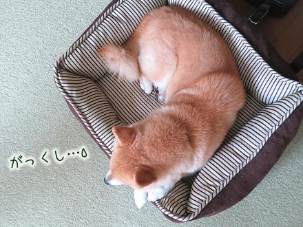20120728-karin_12_119.jpg