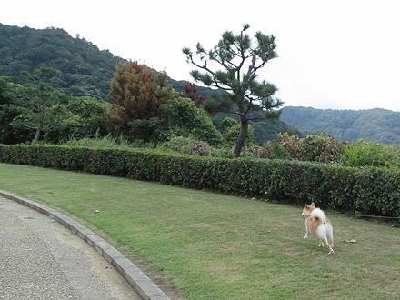 20120917-karin_12_143.jpg