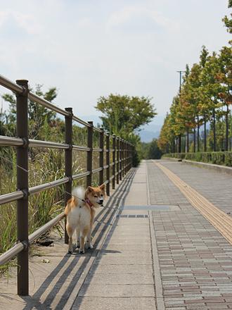20120922-karin_12_147.jpg