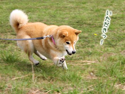 20120929-karin_12_153.jpg