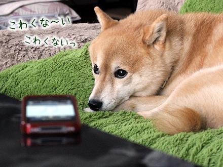 20121006-karin_12_158.jpg