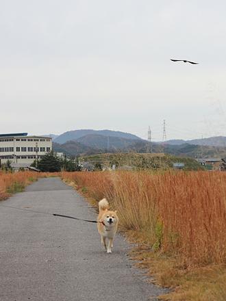 20121205-karin_12_188.jpg