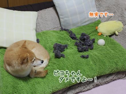 20121227-karin_12_204.jpg