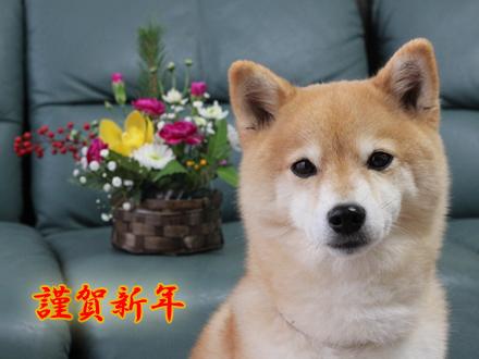 20121230-karin_13_1.jpg