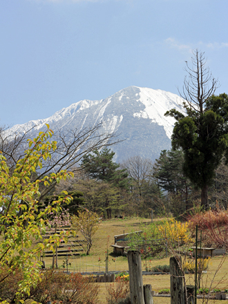 20130409-other_13_9.jpg