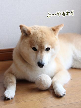 20130623-karin_13_99.jpg