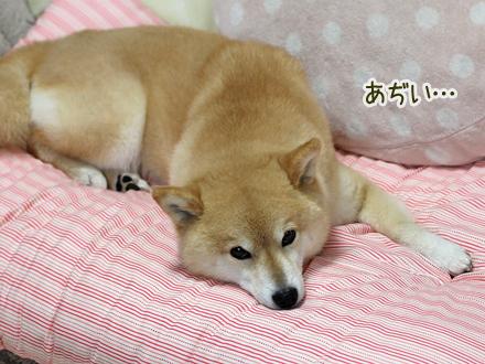 20130715-karin_13_108.jpg