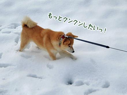 20131229-karin_13_165.jpg