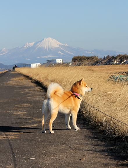 20140127-karin_14_17.jpg