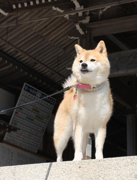 20141025-karin_14_134.jpg