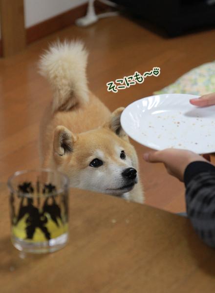 20160106-karin_16_008.jpg
